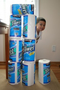 Paper towel fort