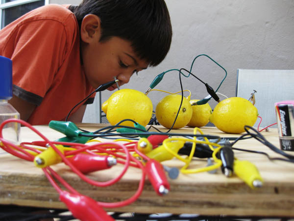 lemon battery science fair