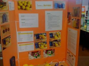 lemon battery science fair display
