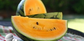 Red Hot Yellow Watermelon