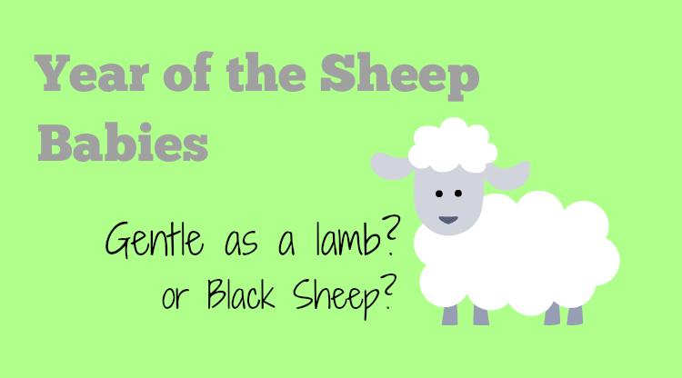 Year of the Sheep Babies - HapaMama