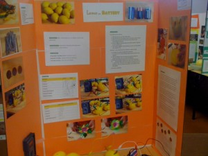 lemon battery science fair display