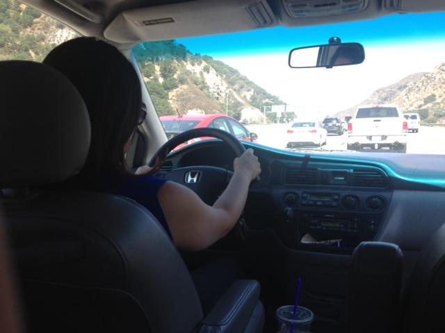 LA Freeway Driving - HapaMama