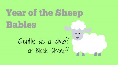 Year of the Sheep: Gentle Lamb or Black Sheep?