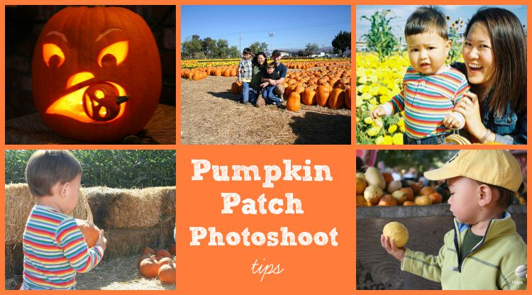 Pumpkin Patch Photoshoot Tips
